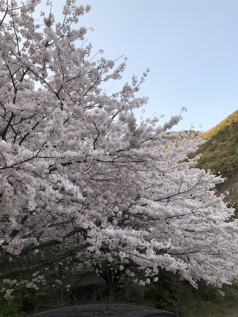 f:id:maru-sankaku1:20180401070618j:image
