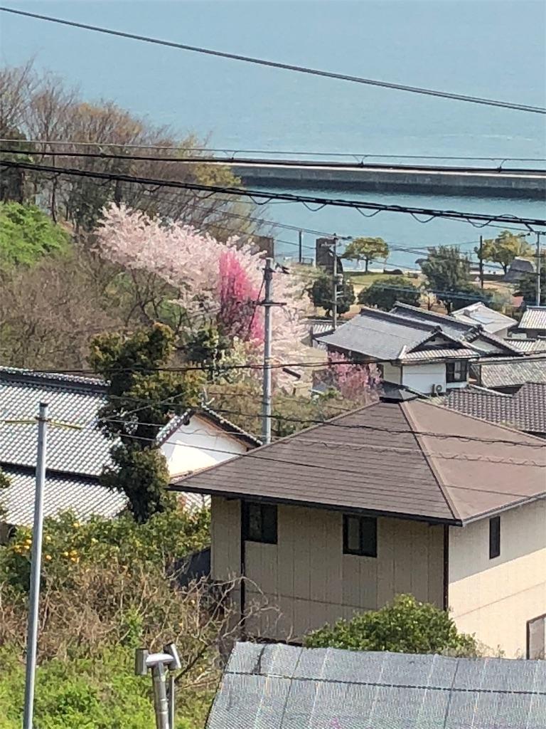 f:id:maru-sankaku1:20180403220531j:image