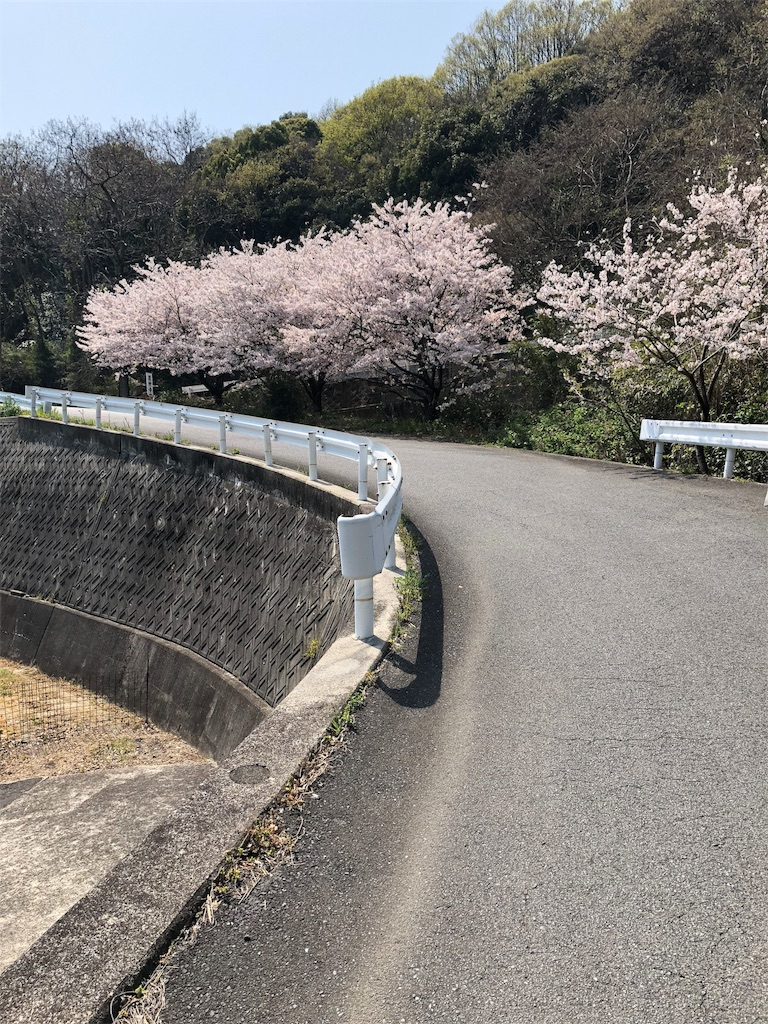 f:id:maru-sankaku1:20180403224824j:image