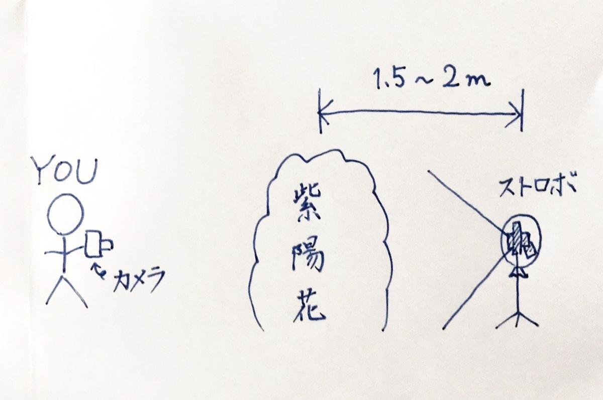 f:id:maru-shikaku:20190708212951j:plain