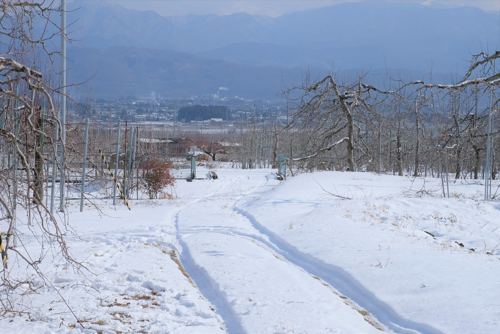 Azumino-Maruchan Orchard
