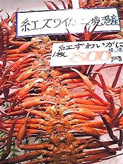 紅すわい蟹