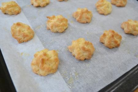 クッキーさくらひめ2