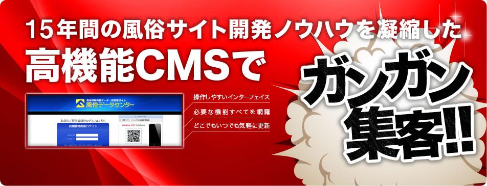 高機能CMSの開発