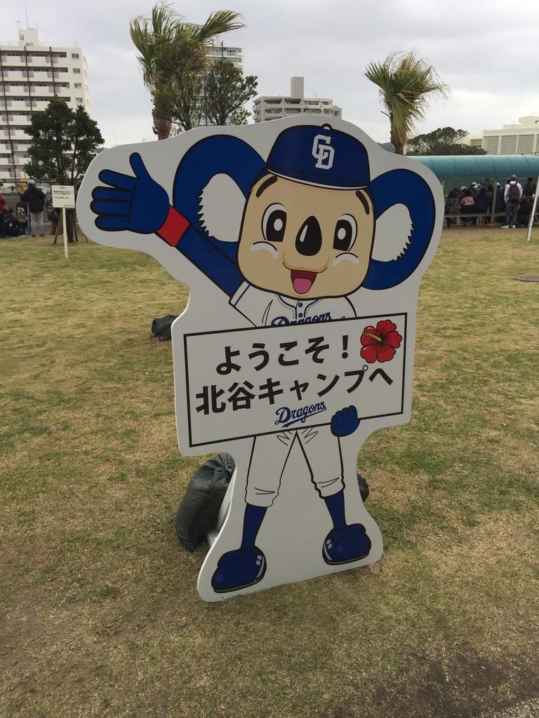 f:id:marukamemushi2014:20190201235314j:plain