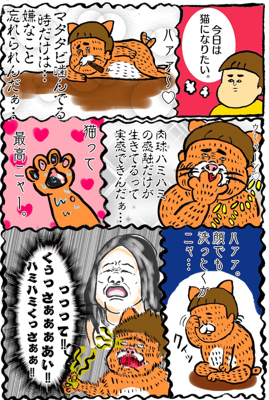 f:id:marukawakoame:20180906000918p:image
