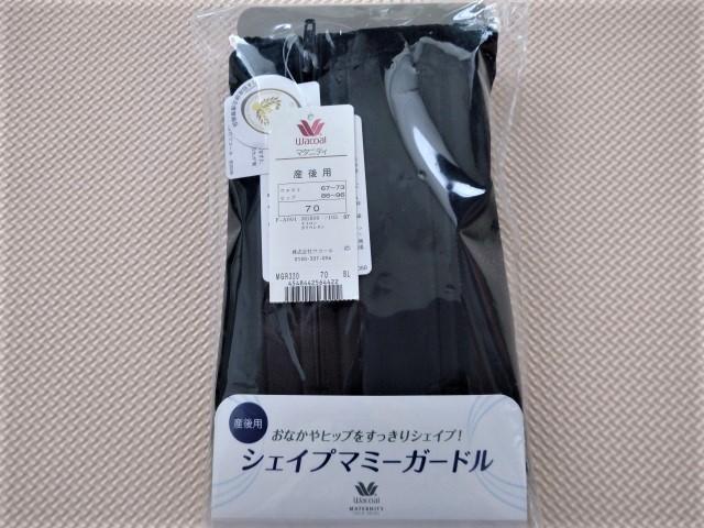 f:id:marukichi3303:20200416174410j:plain