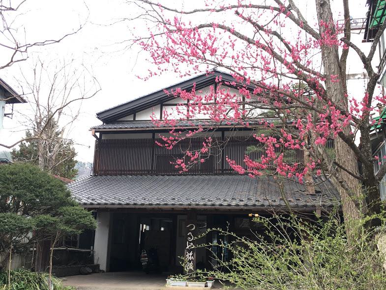 f:id:marukochikiokoshi:20170419085044j:plain