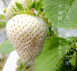 白い宝石と呼ばれるイチゴの画像