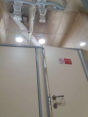 天井が鏡のトイレの画像