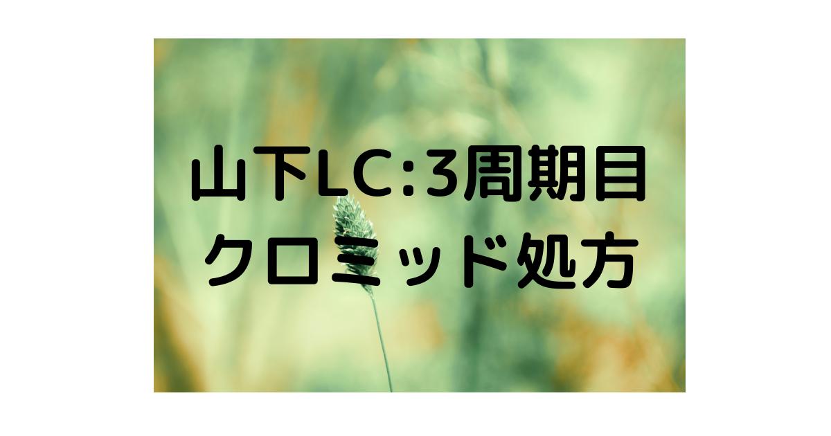 f:id:marumarutowatashi06:20210329140431p:plain