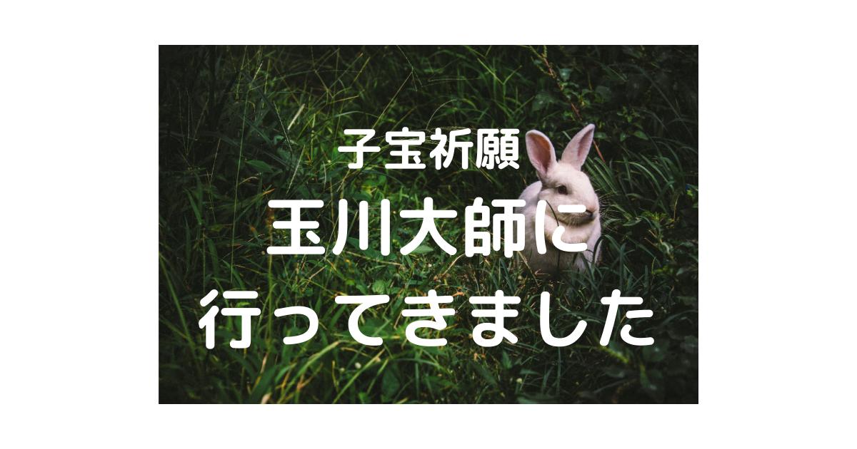 f:id:marumarutowatashi06:20210408160648p:plain