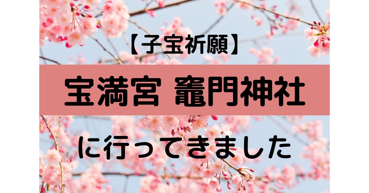f:id:marumarutowatashi06:20210413113716p:plain