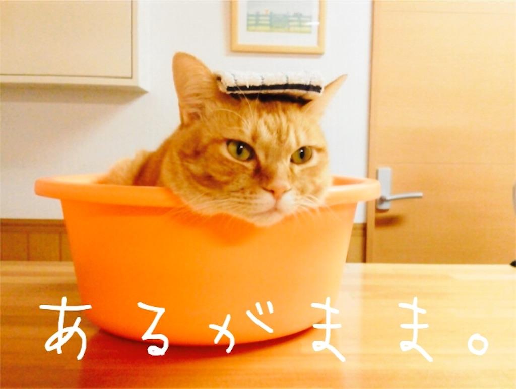 f:id:marunosuke1107:20180511120032j:image
