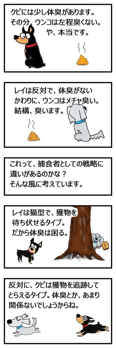 犬の体臭とウンコ臭は反比例