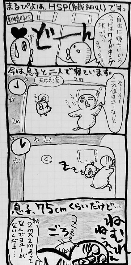 f:id:marupiyo_FIRE:20210618213048j:plain