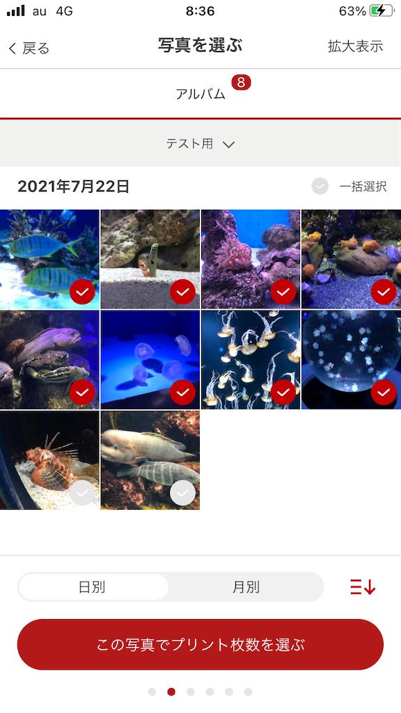 f:id:marurinmaru:20210801084329p:image