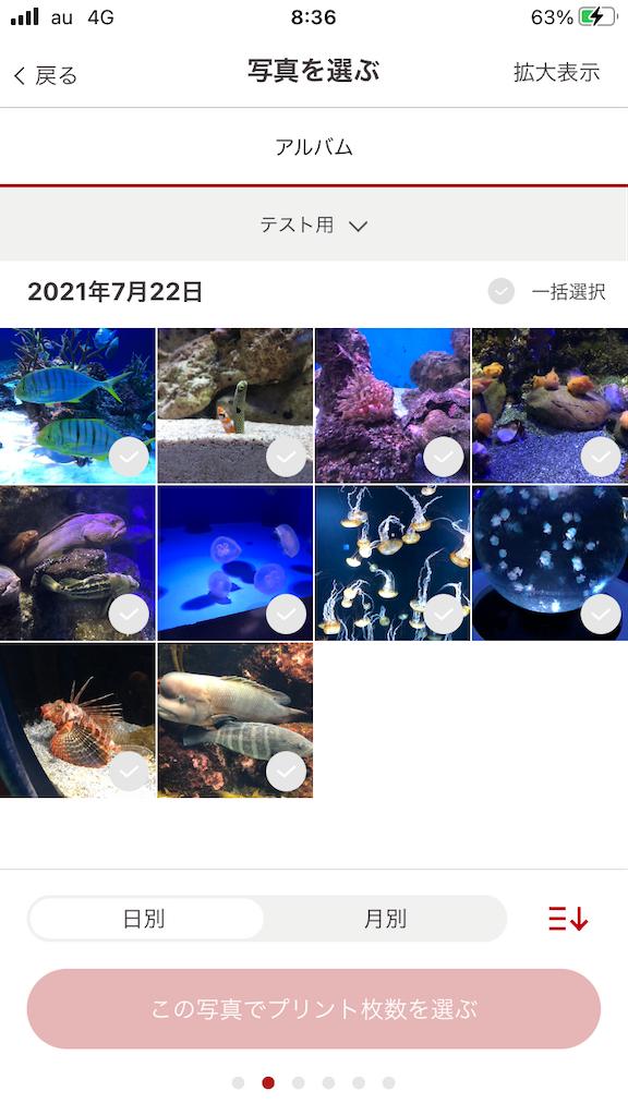 f:id:marurinmaru:20210801084338p:image