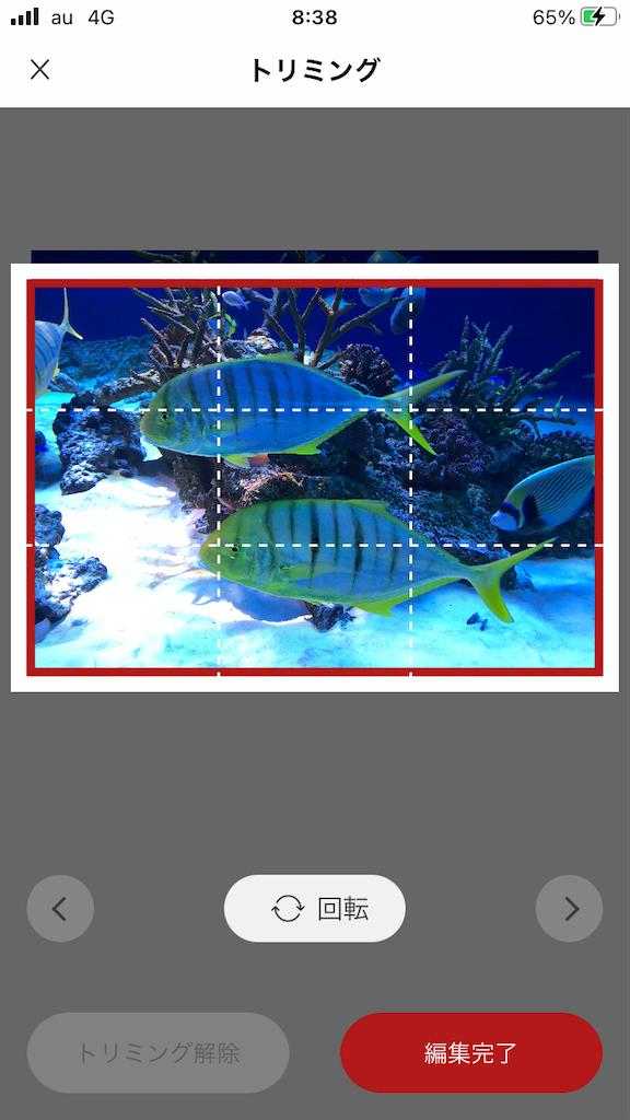 f:id:marurinmaru:20210801084458p:image