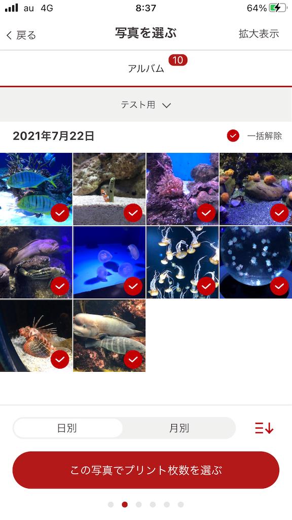 f:id:marurinmaru:20210801084516p:image