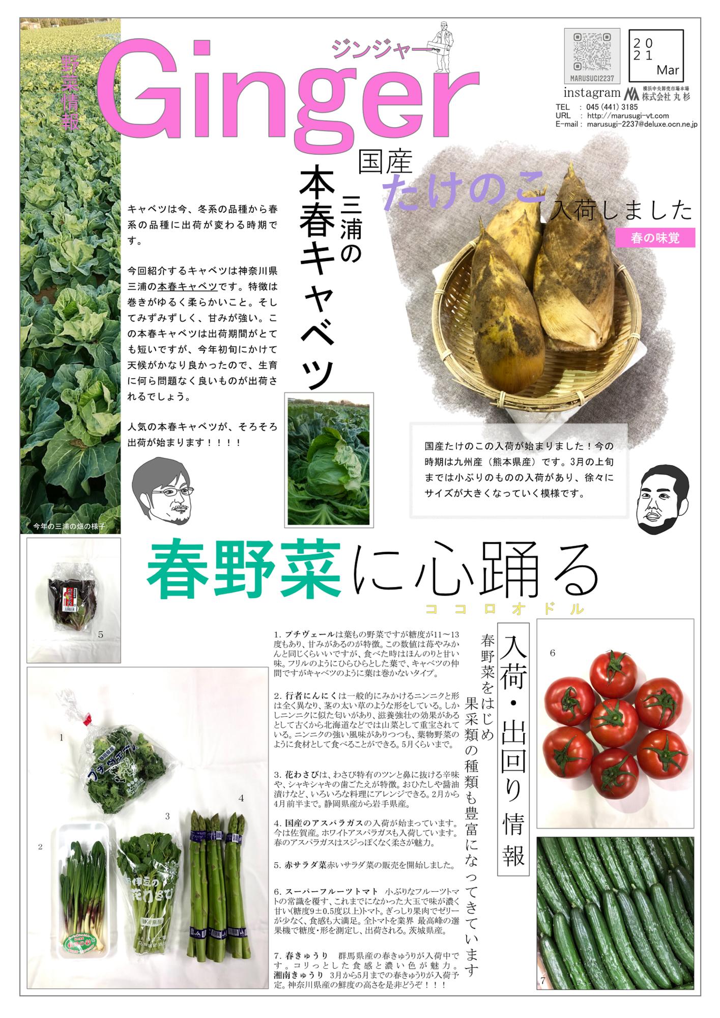 f:id:marusugi-2237:20210302164709p:plain