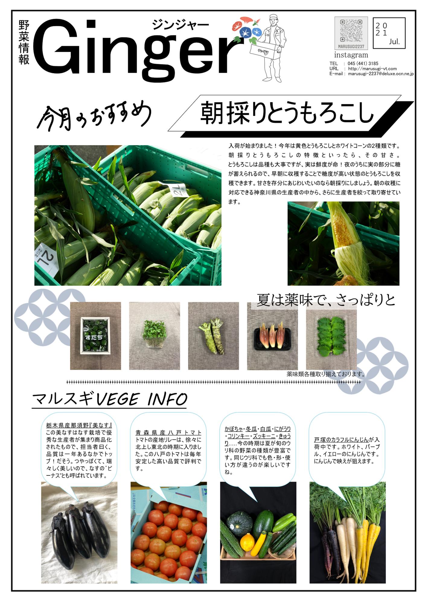 f:id:marusugi-2237:20210706150431p:plain