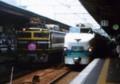 特急雷鳥13号(4013M)485系と臨時寝台特急トワイライトエクスプレス(