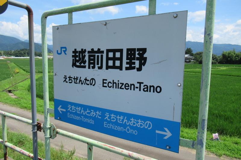 JR西日本 越美北線 越前田野駅