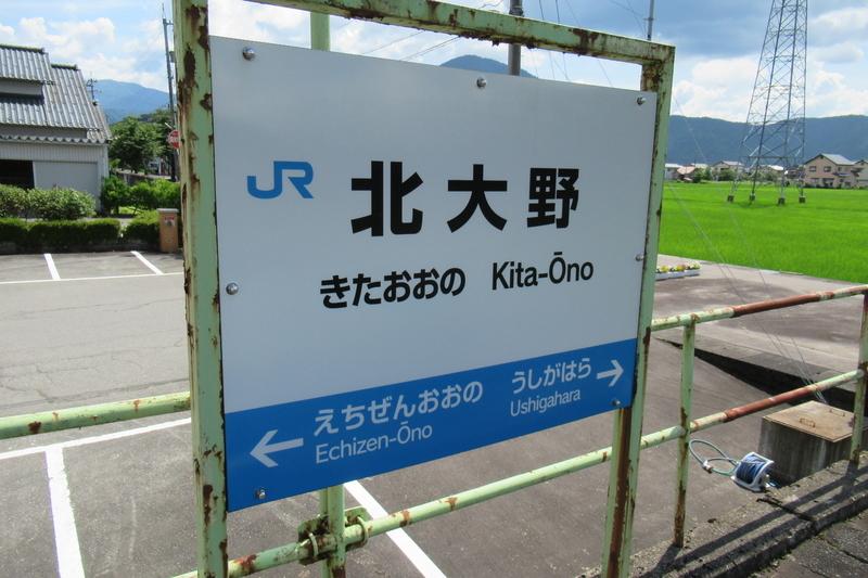 JR西日本 越美北線 北大野駅