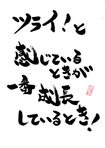 f:id:maruyama-job:20161128231405j:plain
