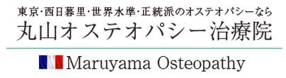 f:id:maruyama-osteopathy:20170207135423j:plain