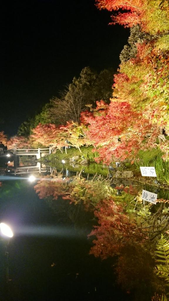 f:id:maruyamabase:20181208161718j:plain