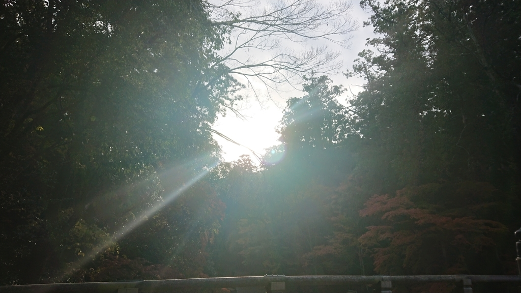 f:id:maruyamabase:20181214182623j:plain