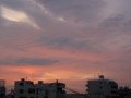 [sky]あさやけ2