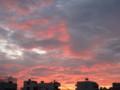 [sky]8/16あさやけ1