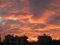 [sky]8/16あさやけ4