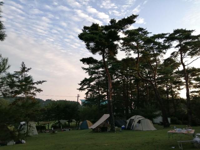 f:id:masa-camp:20200224194213j:plain