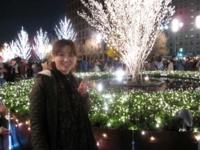 慶応桜 丸ビル前 真実36 2011 12/24