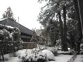 会社裏庭(2012.2.17)