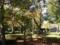 2013 1116 諏訪公園