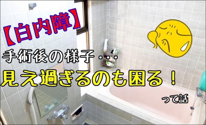 hakunaishou180318a