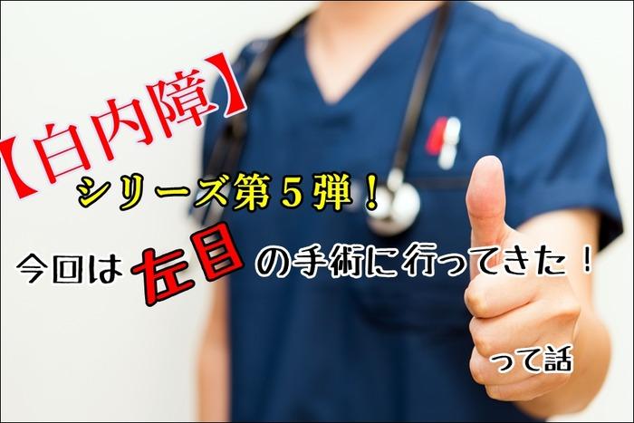 hakunaishou180406a