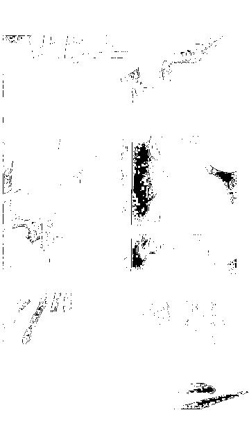 f:id:masa10xxxxxx:20160806231317p:plain
