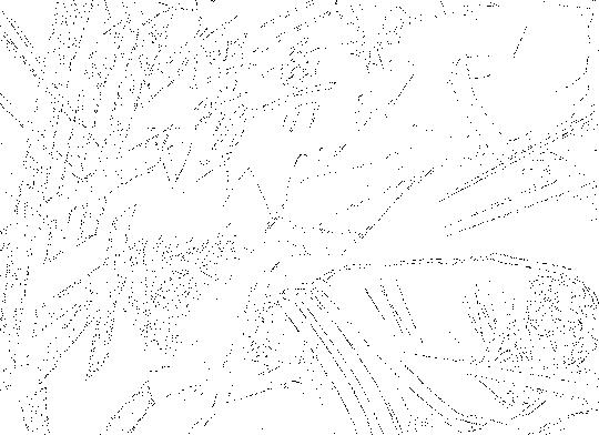 f:id:masa10xxxxxx:20161017145916p:plain