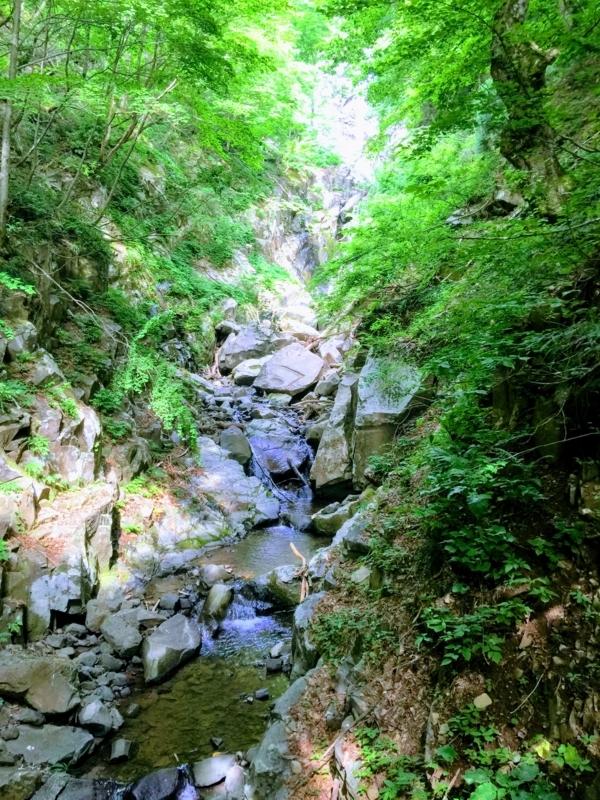 氷ノ山の布滝