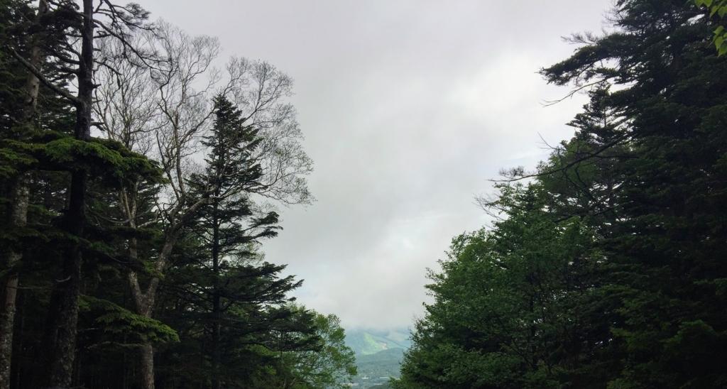 蓼科山からの景色