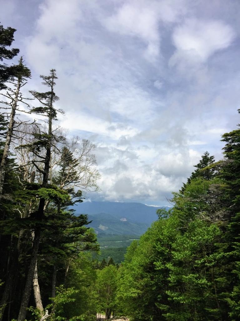 蓼科山の登山道下り