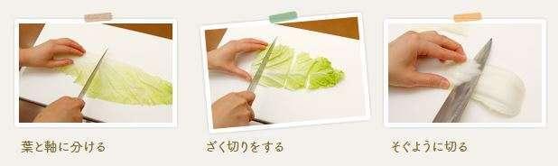 白菜を切っている