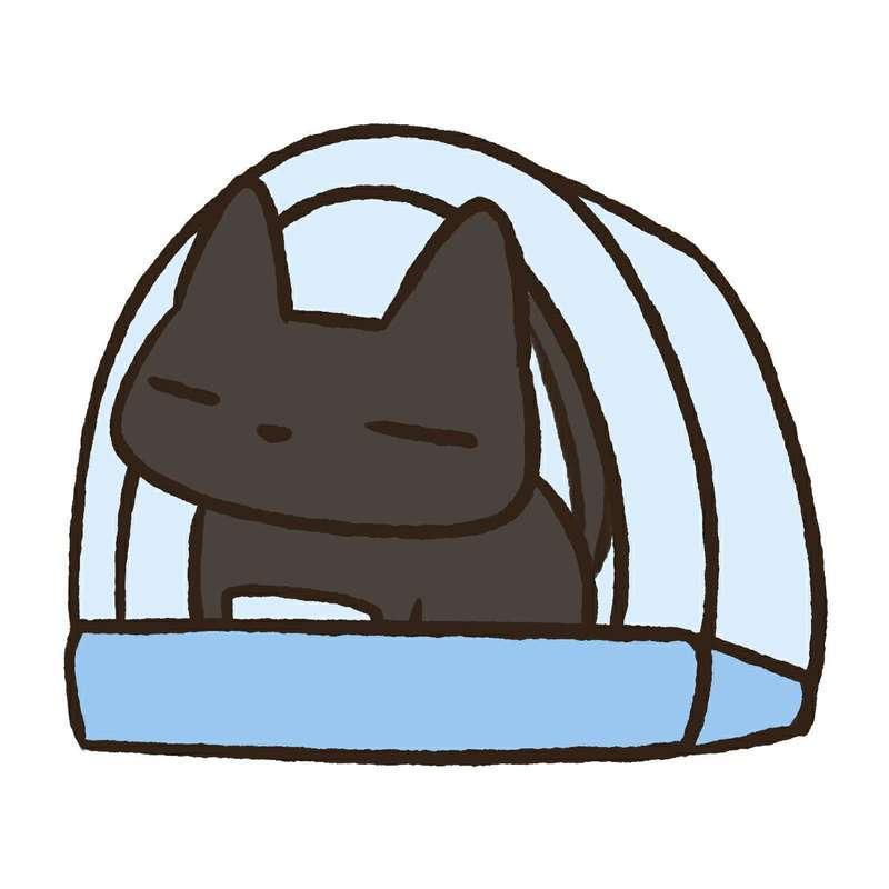 ドーム型トイレで用を足す猫