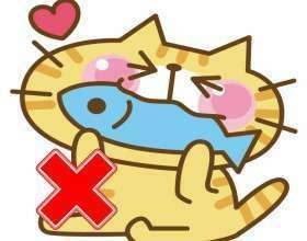 魚を食べる猫のイラスト